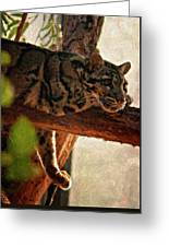 Clouded Leopard II Painted Version Greeting Card