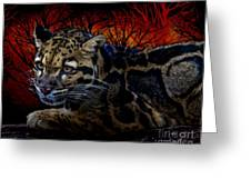 Clouded Leopard Two Greeting Card