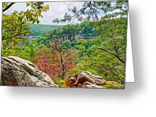 Cloudland Canyon State Park Georgia Greeting Card