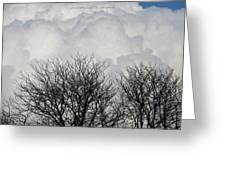 Clouds Named Cotton Greeting Card