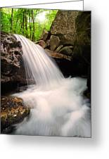 Clouds On The Creek Greeting Card
