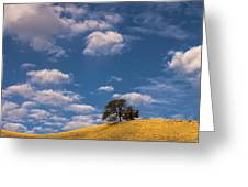 Clouds Over Lone Tree Greeting Card