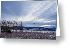 Cloudy Daybreak Dry Thistles Greeting Card