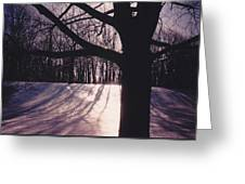 Clove Lakes Park In Winter Greeting Card