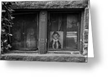 Clown In The Window Greeting Card