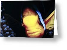 Clownfish 8 Greeting Card