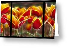 Cluisiana Tulips Triptych  Greeting Card by Peter Piatt
