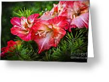 Cluster Of Beauty Greeting Card
