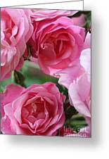 Cluster Of Pink Greeting Card