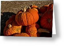 Knarly Pumpkin Greeting Card