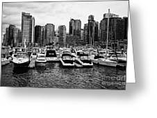 coal harbour marina and high rise apartment condo blocks in the west end Vancouver BC Canada Greeting Card