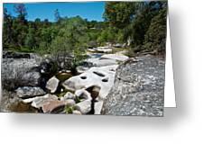 Coarsegold Creek Bed In Park Sierra-ca Greeting Card