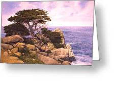 Coast At Lobos Greeting Card