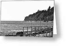Coast Line B And W Greeting Card