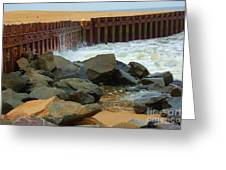 Coast Of Carolina Greeting Card