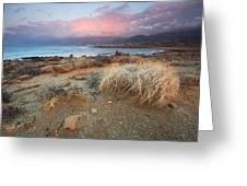 coast of Crete 'I Greeting Card