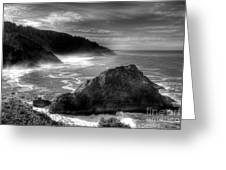 Coast Of Dreams 7 Bw Greeting Card