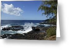 Coast Of Kauai Greeting Card