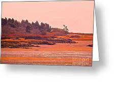 Coastal Bay At Low Tide Greeting Card