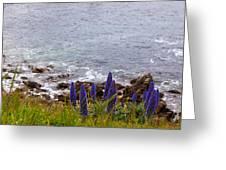 Coastal Cliff Flowers Greeting Card