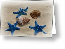 Coastal Dreams Greeting Card