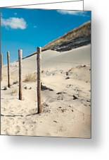 Coastal Dunes In Holland 2 Greeting Card