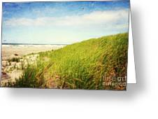 Coastal Dunes Greeting Card