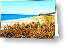 Coastal Lookout Greeting Card