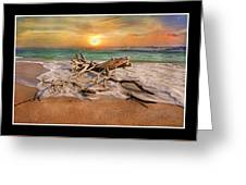 Coastal Morning  Greeting Card