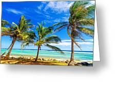 Coastal Palm Trees Greeting Card