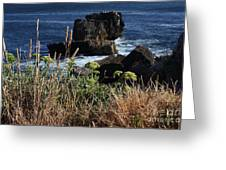 Coastal View From Cascais  Greeting Card