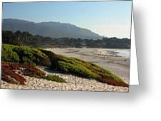 Coastal View - Ice Plant II Greeting Card