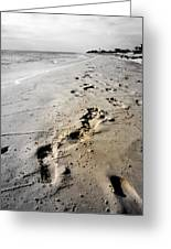 Coastal Walks Greeting Card