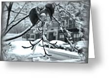 Coat Of Ice - Winter In New York Greeting Card