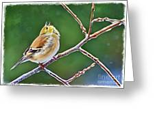 Cock-a-doodle Doo Gold Finch - Digital Paint Greeting Card