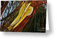 Cockatoo In Abstract Greeting Card