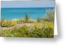 Cockburn Beach Dunes 2am-112161 Greeting Card