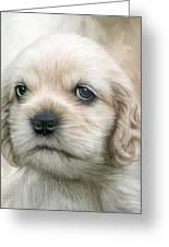 Cocker Pup Portrait Greeting Card