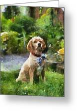 Cocker Spaniel Outside 02 Greeting Card