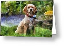 Cocker Spaniel Outside 04 Greeting Card