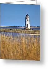 Cockspur Lighthouse In The Sanannah River Greeting Card