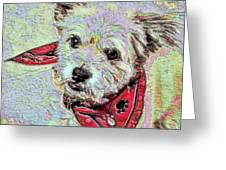 Cocoa On The Poster Greeting Card