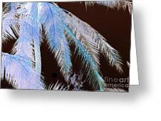 Coconut Palm - Reunion Island - Indian Ocean Greeting Card