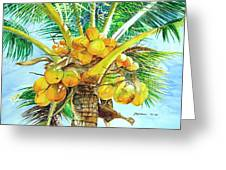 Coconut Series II Greeting Card