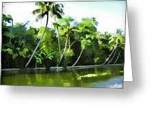 Coconut Trees And Other Plants In A Creek Greeting Card