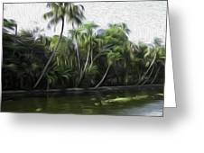 Coconut Trees And Other Plants Lined Up Greeting Card