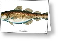 Codfish Greeting Card