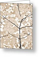 Coffee Brown Leaves Melody Greeting Card