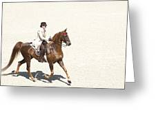 Coffee Saddlebred Greeting Card