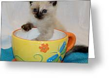 Coffee With A Friend Greeting Card